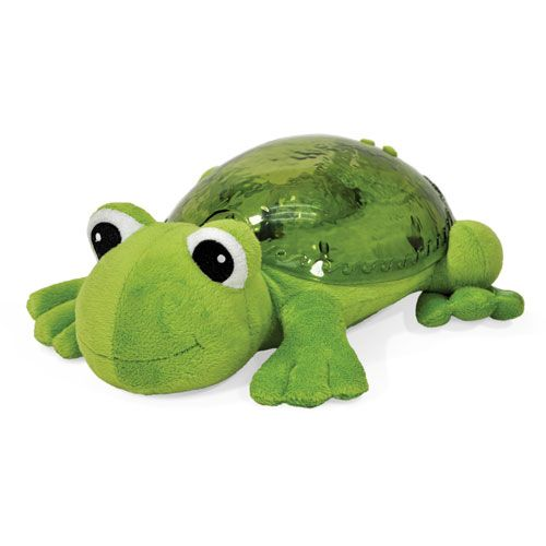 Tranquil Frosch