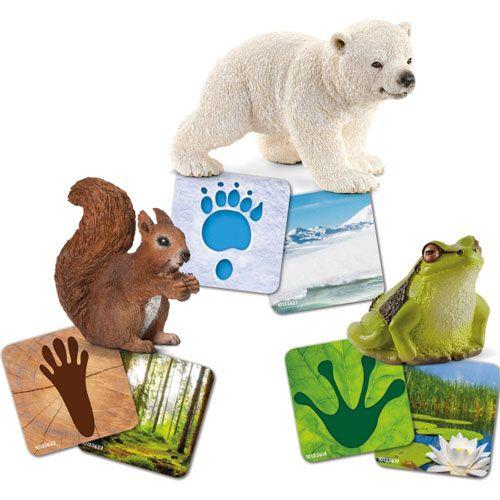 Schleich Lernkarten Wild Life