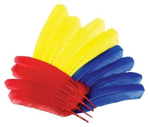 Indianer Federn, 12 Stk.